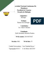 Tarea 1_RBrizuela_55.docx