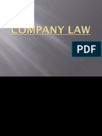 Company Law Ppt With Effects