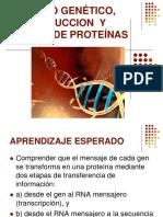 Codigo Genetico y Traduccion