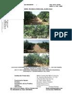 Informe Tecnico - Pozo Alto s.a.c.-febrero 2019