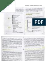 ana-atorresi-gp.pdf