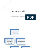 Lab 1 de Parasitos