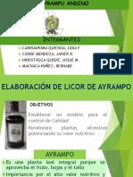 Exp. de Ayrampo