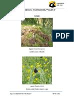 Especies de Fauna Registradas Del Paquete 2