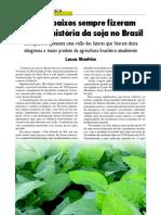 artigo técnico altos e baixos da soja.pdf