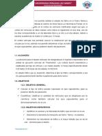 ESTUDIO-DE-TRAFICO.docx