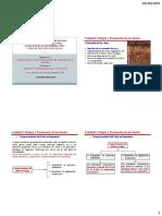 Unidad_I_Origen_y_Formacion_de_los_Suelo.pdf