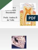 odontogenese.pdf