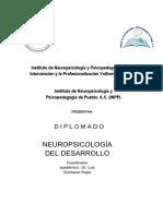 Programa Neuropsicología Del Desarrollo 2017 (INPI-InPP)F.doc