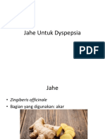 Jahe Untuk Dyspepsia