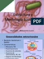 Estructura y Morfología lyuglfyulfl