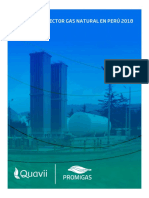 INFORME DEL SECTOR GAS NATURAL EN PERÚ 2018.pdf