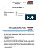 Prog Anual 1ro - Fcc - 2019