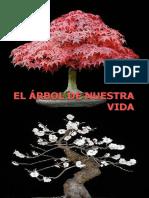 El Arbol de Nuestra Vida.ppt