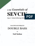 Sevick Double Bass