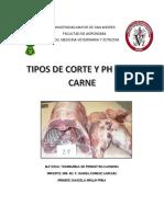 CARNICOS.docx