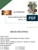 2. Integrantes de La Colmena