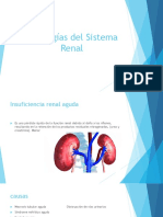 Patologías Del Sistema Renal UCI