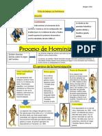 Ficha Hominización