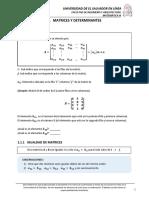 VIRFIA_MAT315_U1_CT_1.1-1.5_ME.pdf