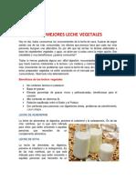 Las 5 Mejores Leche Vegetales-1