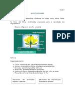 Biologia_Aula_05_(4588)