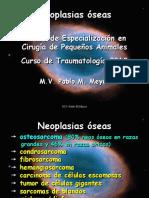 Medicina y Cirugia Pediatrica de Los Animales de Compañia