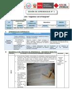 SESIONES DE APRENDIZAJES 5TO AÑO 2019 - copia.docx
