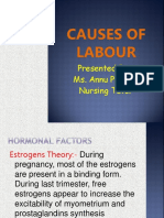 Causes of Labour