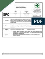 SPO AUDIT INTERNAL.docx