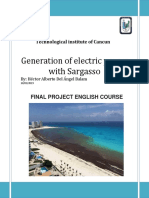 Generation of Electric Power With Sargazo