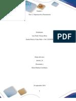 Paso 2 Organización y Planeación final.docx