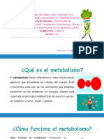 metabolismo yo.pptx