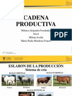 Cadena Productiva de la carne bovina.pptx