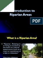 reparian