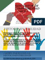 Complejo Mayor de Histocompatibilidad (1)