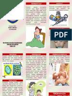 Leaflet Imunisasi Campak