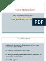 Bilirubin Metabolism