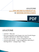 Anatomi Muskuloskeletal & Integumen Dr.suhada