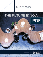 Us Audit 2025 Final Report