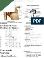 Resumen del Dr. Vázquez.pptx