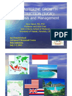 2 - Ivica Zalud - IUGR Bali 2012.ppt [Read-Only]-converted.pptx