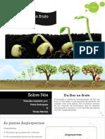 Biologia_da Flor Ao Fruto