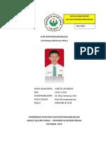 IKN.docx