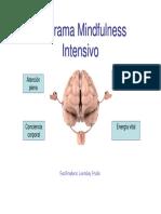 Programa Mindfulness Intensivo Formatio Curso Lorenlay