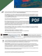 Definitivo1.pdf