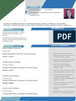 Modelo Curriculum Carol Arroyo