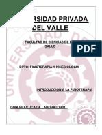 Guía Practica Introducción a La Fisioterapia - 2019