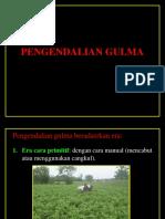 PENGENDALIAN GULMA_MAMICK.pptx
