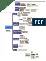 Poder judiciário.pdf
